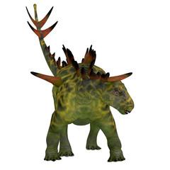 Huayangosaurus on White - Huayangosaurus was an armored herbivorous dinosaur that lived in the Jurassic Period of China.