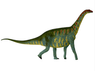 Jobaria Side Profile - Jobaria was a herbivorous sauropod dinosaur that lived in the Jurassic Period of the Sahara Desert in Africa.