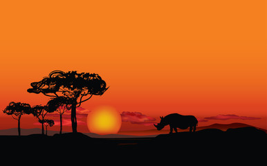 African landscape with animal rhino silhouette. Savanna sunset background