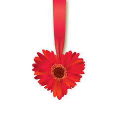 Valentines Day Heart Made of Flower with Ribbon Isolated on white