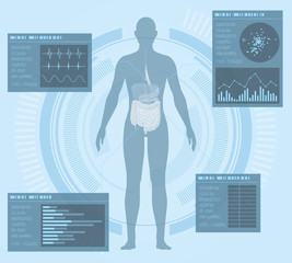 medical interface, human digestive organs, vector illustration