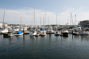 Fond de hotte en verre imprimé Port Newport Harbor - Rhode Island - USA