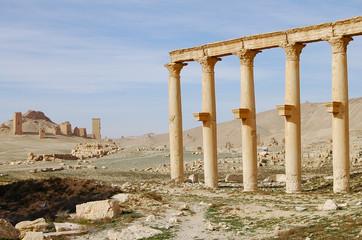 Palmyra Ruins - Syria (Before Civil War)