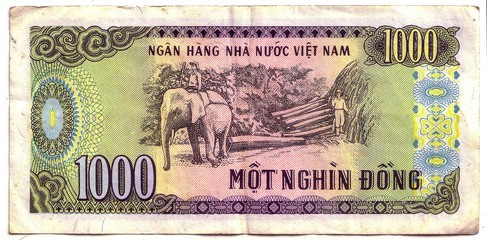 1000 dong bill of Vietnam, crumpled and used, top view. the front of the banknotes
