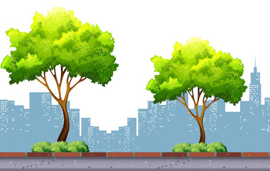 Trees on the pavement with city background
