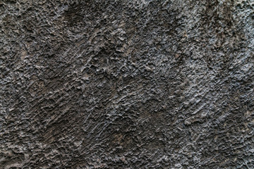 Wall Mural - Closeup of the cement wall texture