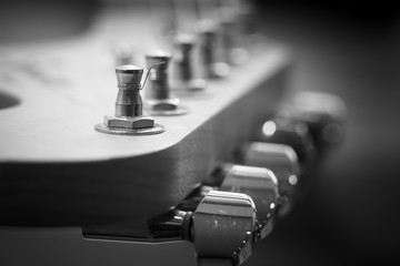Guitar headstock close-up. Guitar pegs black and white. Retro stylized with shallow depth of field