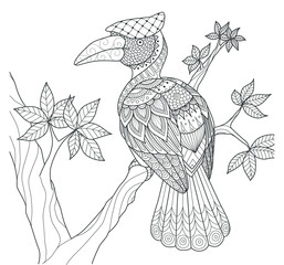 Hornbill bird on the tree zentangle design for coloring book for adult