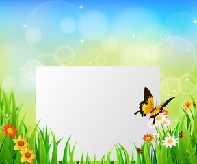 Background Green Grass with butterfly And paper