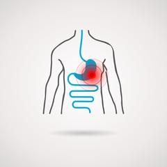Körper Magen Darm