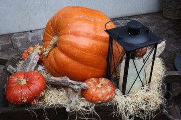 pumpkin and lantern on a wheelbarrow for halloween day
