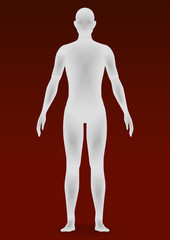 human body silhouette, vector illustration