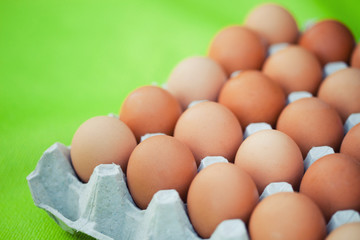egg tray on a bright green background