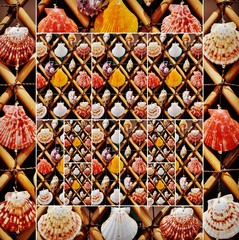 Collage of close ups of colorful sea shells