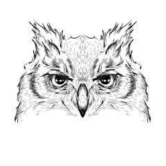 Image Portrait owl. African / indian / totem / tattoo design. Use for print, posters, t-shirts. Hand draw vector illustration