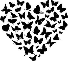Butterfly Vector Heart