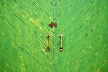 Antique green wooden doors with brass handles and door guard