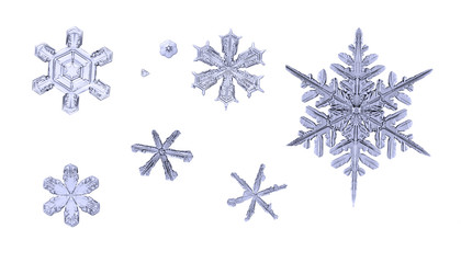 set of natural snowflakes isolated on white background macro closeup