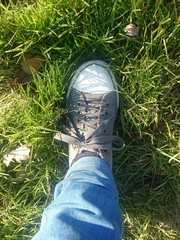 Sunny day walking on the grass