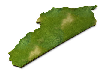 3D Syria Map Grass