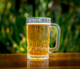 Mug of cold beer