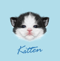 Domestic Kitten Portrait. Vector Illustration.