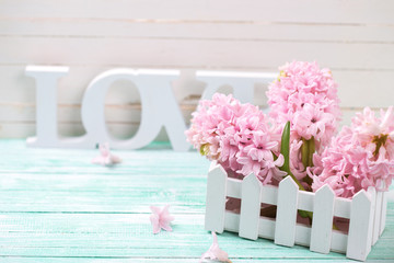 Pink hyacinths and wooden word love   on turquoise wooden backgr