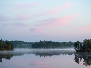 forest lake with morning fog