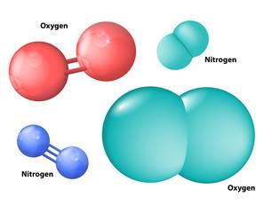nitrogen and oxygen molecule