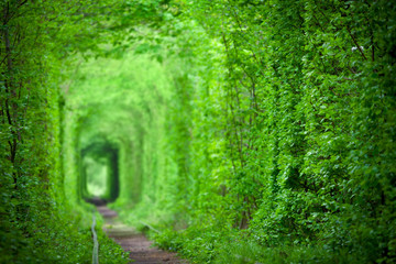 Magic Tunnel of Love, green trees and the railroad background