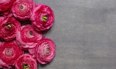 Some red peonies on dark wooden background
