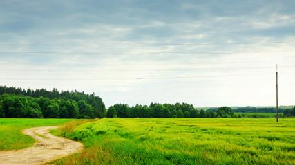 Nature Rural Landscape