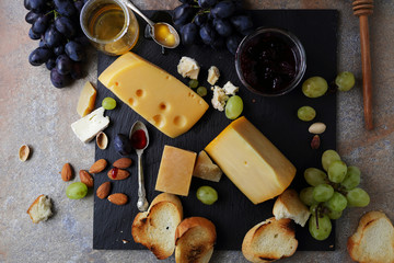 delicious cheeses for appetizer