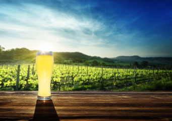 beer and vineyard in sunset time