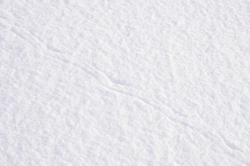 Background of snow with animal tracks