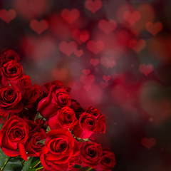 Valentine red rose abstract background.