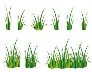 Gras Spielwiese Wiese