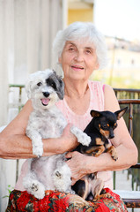 beautiful Senior smiling woman hugging two  small  dogs