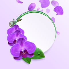 Banner with Purple Orchids