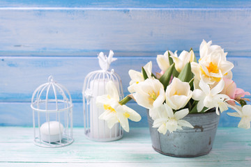 White daffodils and tulips  flowers in bucket  on turquoise  pai