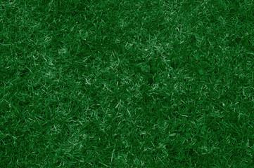 erba. vista dall'alto di un prato verde