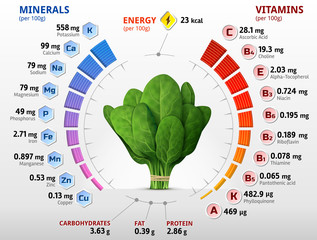 Vitamins and minerals of spinach leaves. Spinach nutrition facts