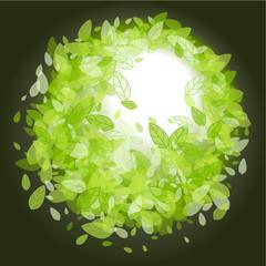 Green leaves round frame