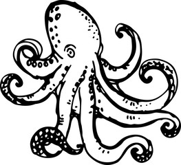 Octopus. Vector illustration