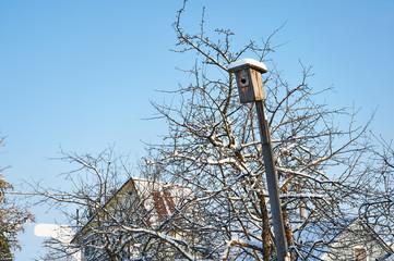 Winter landscape sunny weather