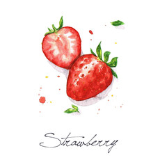 Watercolor Food Painting - Strawberries