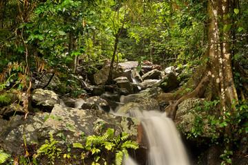 little Waterfall at Barron Gorge National Park, Cairns, Queensland