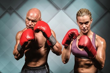 Composite image of portrait of boxers with gloves