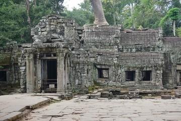 The Ta Prohm (Taprom) temple in the jungle near Angkor, Cambodia