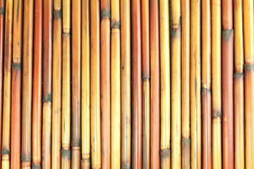 beautiful bamboo texture design background